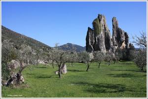 Monumento_Naturale_di_Campo_Soriano_-_Rava_di_San_Domenico_o_Cattedrale_-_Monti_Ausoni_-_Lazio